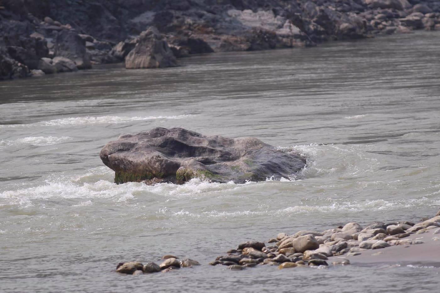 खुवालङ फुटाउने सम्बन्धमा संघ र प्रदेशले कुनै निर्णय गरेको छैन : मुख्यमन्त्री राई