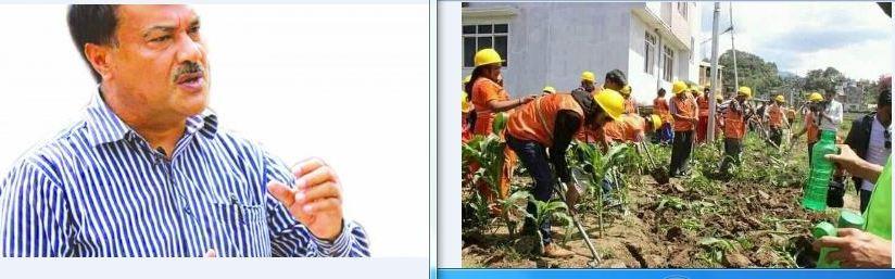 प्रधानमन्त्री रोजगार कार्यक्रम : बेल्चाले मकै गोडेको पहिलो पटक देखियो
