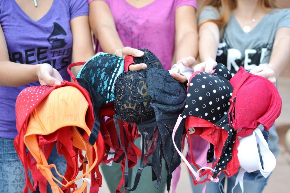 'ब्रा' संकलन गरेर २० देशका महिलालाई उपहार !