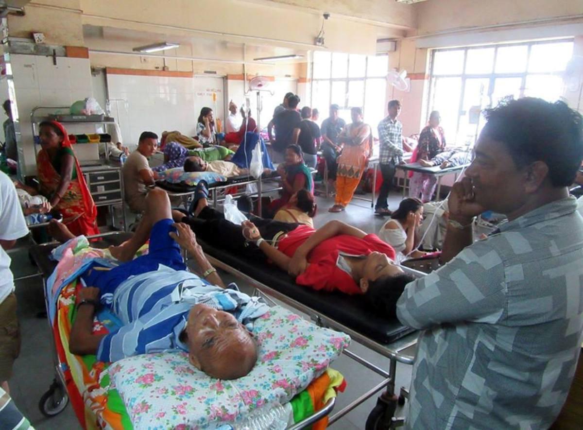 सातै प्रदेशमा डेंगु : ६ जनाको मृत्यु, ३१ सयमा संक्रमण