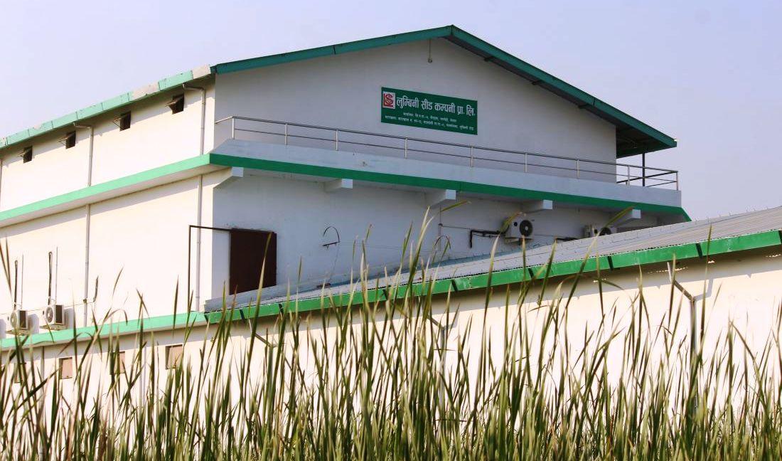 लुम्बिनी सिड कम्पनीले पायाे बिउ प्रशोधन कारखाना प्रमाणित नम्बर