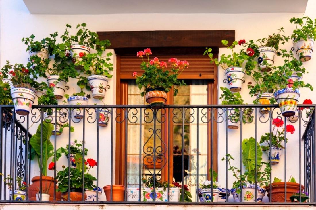 घरमा ढकमक्क फूल बनाउने मन छ ?