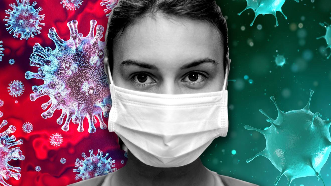 कर्णालीमा थप २९ जनामा कोरोना संक्रमण पुष्टि, संक्रमितको संख्या २६२ पुग्यो
