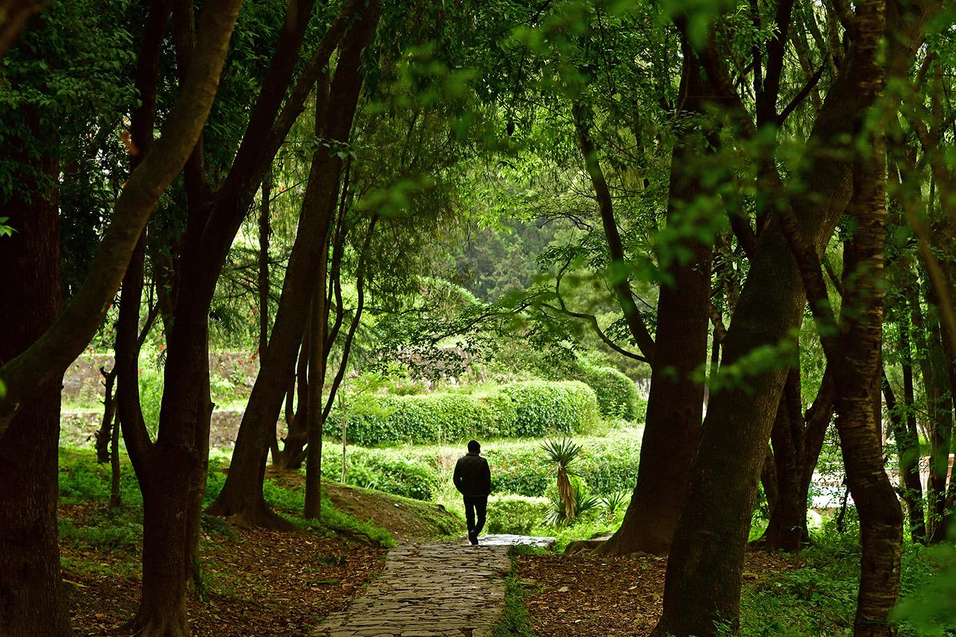 लकडाउनमा रमाइरहेको पार्क प्रकृति