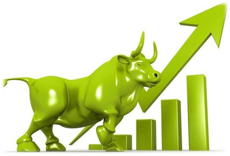 एनआईसी एशिया लघुवित्तकाे शेयर कारोबार भएको पहिलो दिन नै सर्किट