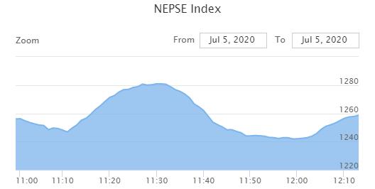 शेयर बजारमा अस्वाभाविक उतारचढाव